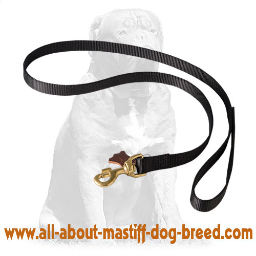 Adjustable nylon leash for good fit