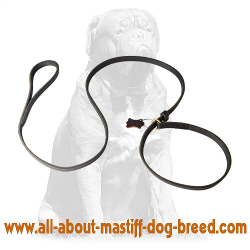 Extra strong leather leash and collar with reliable hardware