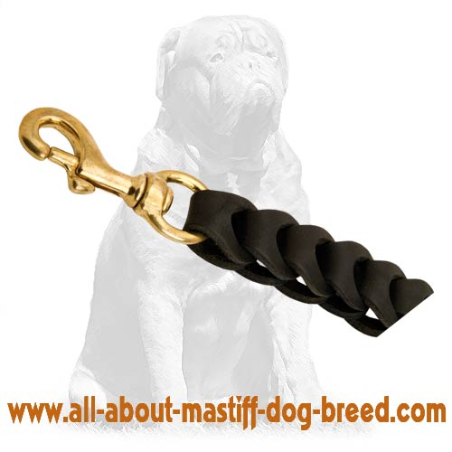 Leather dog leash with brass snap hook