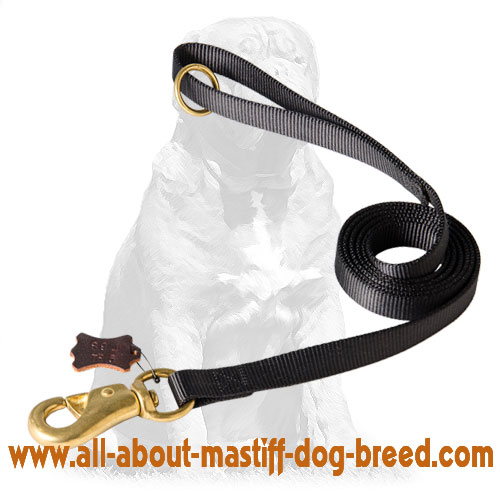 Durable nylon dog leash with brass snap hook nad O-ring