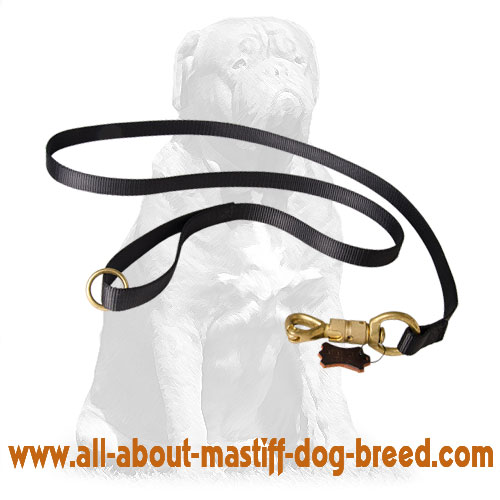 Durable nylon dog leash with brass smart lock
