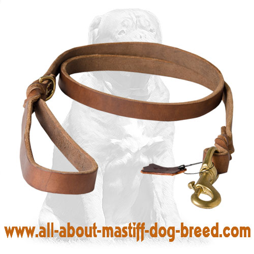 Multifunctional leather dog leash with  snap hook