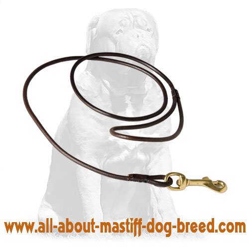 Round leather leash for dog shows