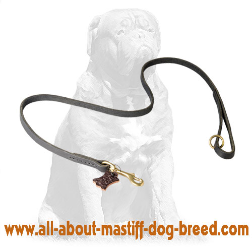 Handy leather dog leash with handle