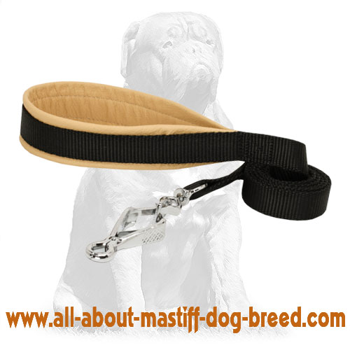 Nylon dog leash for any weather
