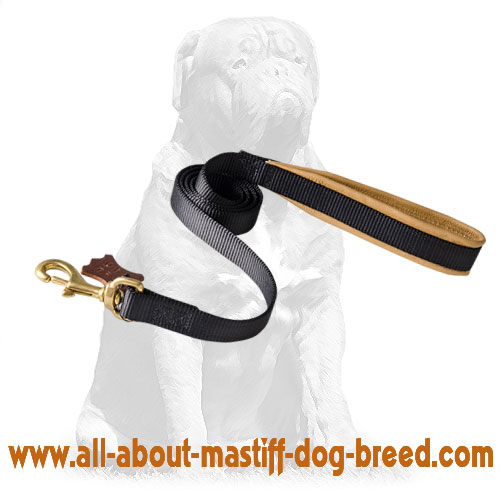 Extra comfortable nylon leash with no rubbing handle