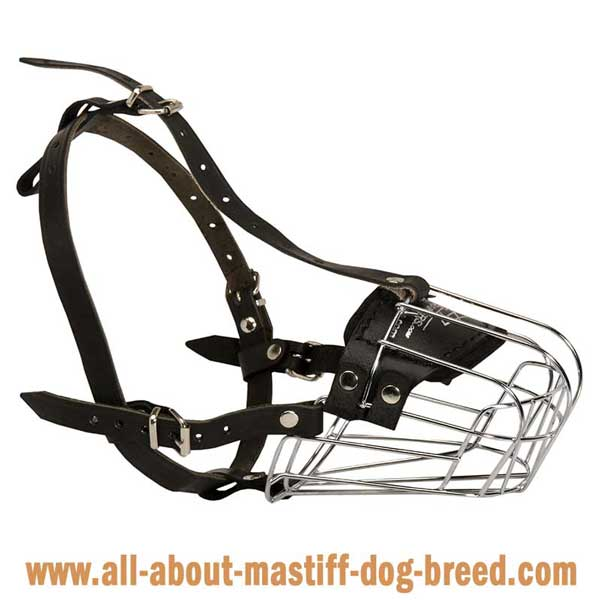 Mastiff comfortable wire cage muzzle