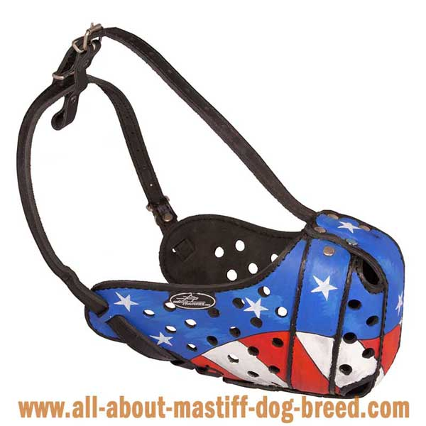 Handpainted Leather Dog Muzzle for Attack Training