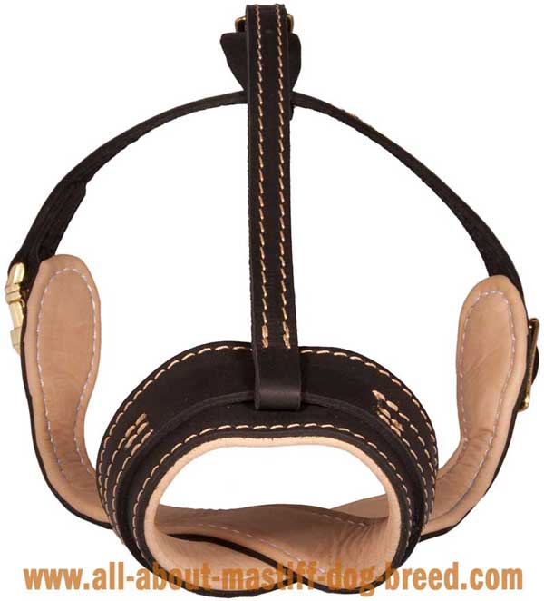 Super comfortable leather muzzle