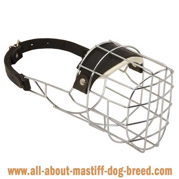 Bullmastiff Wire Basket Muzzle with One Strap