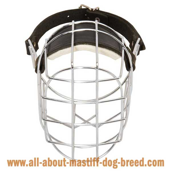 Bullmastiff Wire Basket Muzzle with Perfect Air FLow