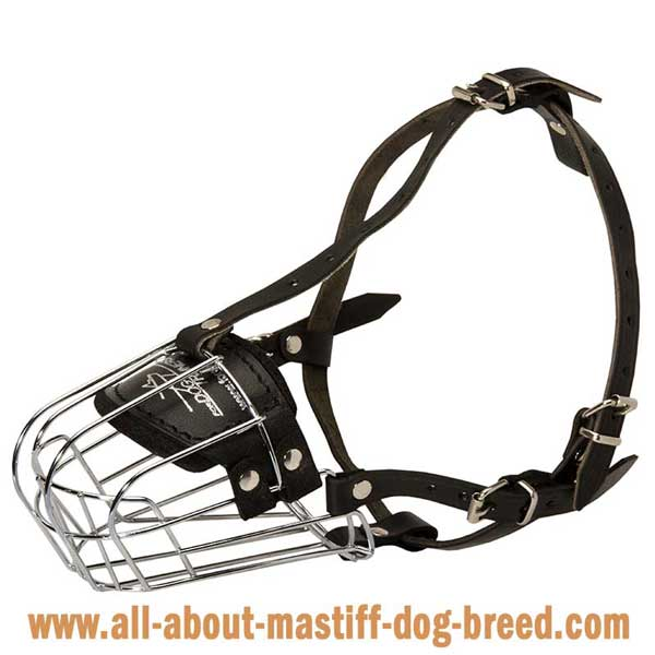 Cane Corsometal muzzle with adjustable straps
