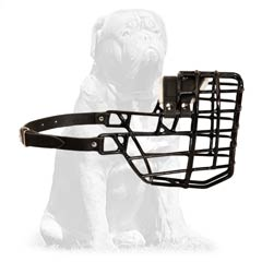 Mastiff Breed Metal Cage Muzzle