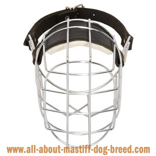 French Mastiff Wire Basket Muzzle with Perfect Air Circulation