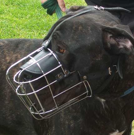 Looking For Mastiff Muzzles Buy Now Strong Wire Basket Dog Muzzle ...
