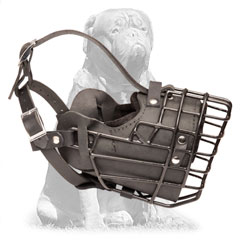 Mastiff Winter Metal Cage Dog Muzzle with Felt Padded  Nose Area