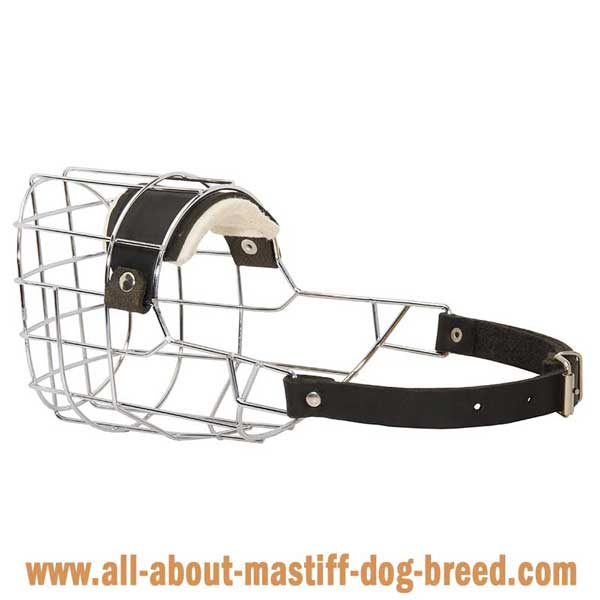 Mastiff Wire Basket Muzzle with One Strap