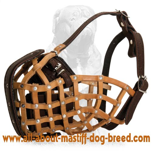 Attack training leather dog muzzle