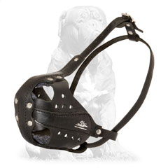 Professional training dog muzzle