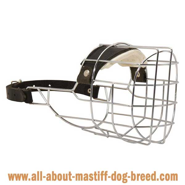 Bullmastiff Wire Basket Muzzle with Good Ventilation