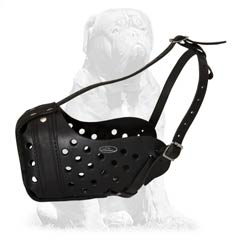 Strong dog muzzle for training