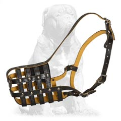 Reliable Mastiif muzzle with anti-loose fixation