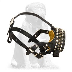 Mastiff leather dog muzzle with cones and studs
