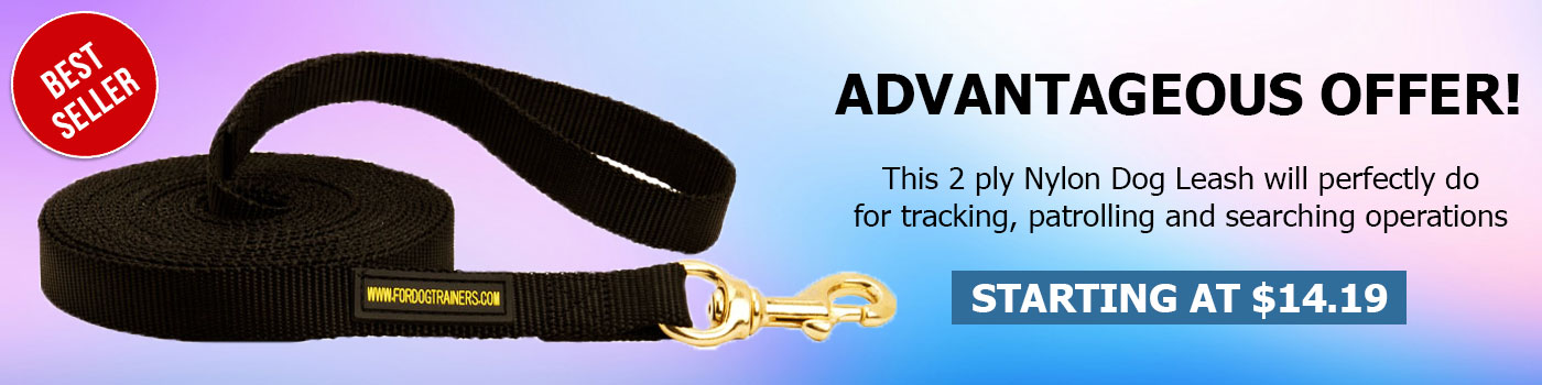 Nylon Dog Leash for Training and Tracking-Dog Leash Training
